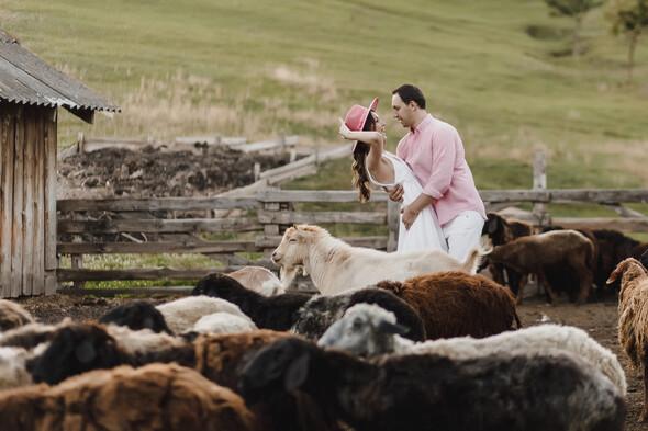 Sheepland lovestory - фото №21