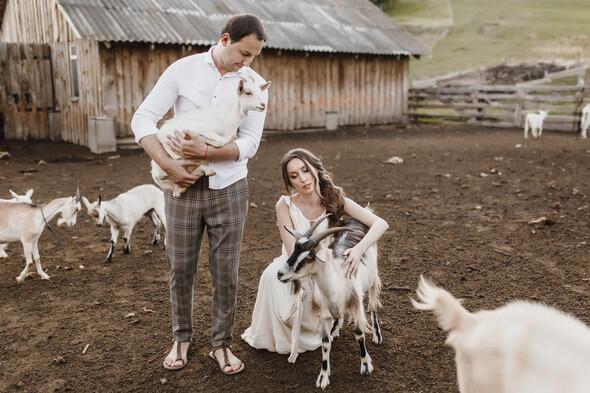 Sheepland lovestory - фото №13