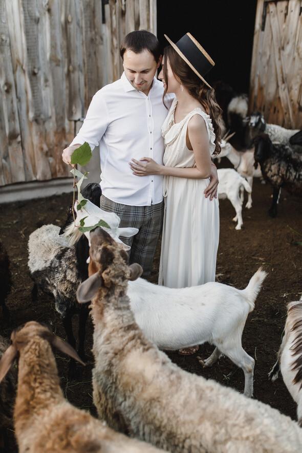 Sheepland lovestory - фото №3