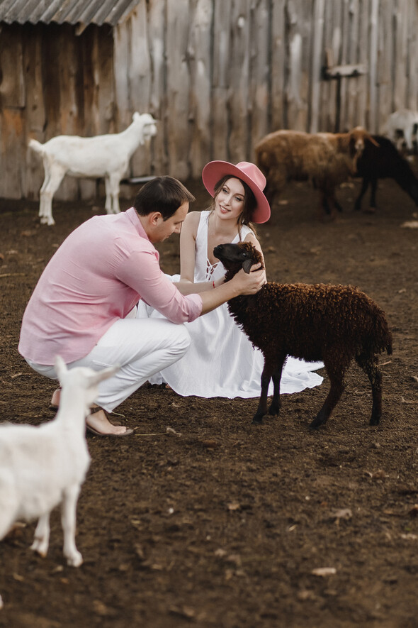 Sheepland lovestory - фото №30