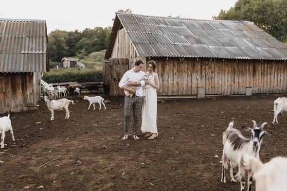 Sheepland lovestory - фото №11