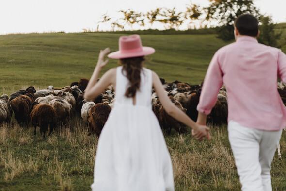 Sheepland lovestory - фото №31