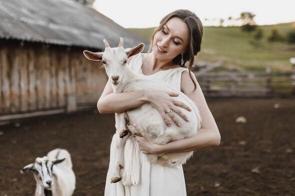 Sheepland lovestory - фото №8