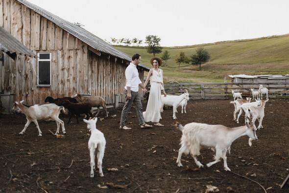 Sheepland lovestory - фото №1