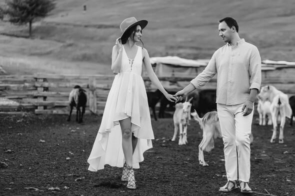 Sheepland lovestory - фото №23