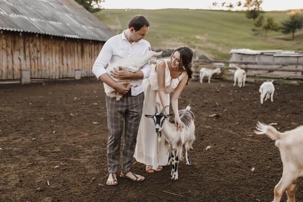Sheepland lovestory - фото №12