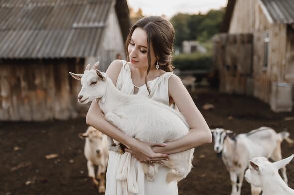 Sheepland lovestory - фото №10