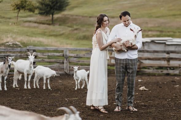 Sheepland lovestory - фото №4