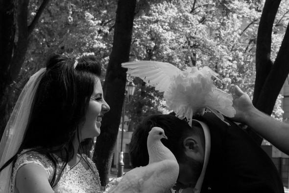 Елена и Дмитрий - фото №13