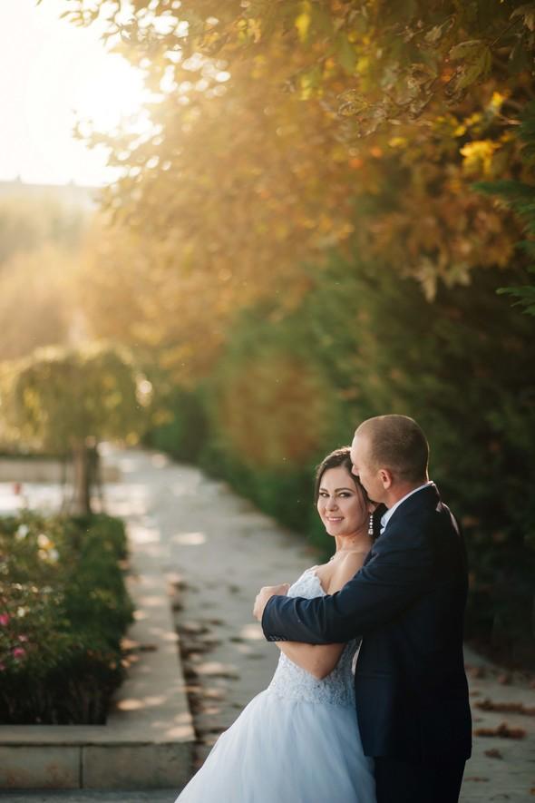 Свадьба 2017 - фото №2