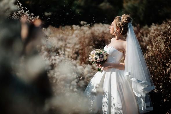 Свадьба 2017 - фото №5