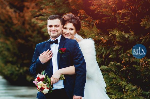Свадьба 2016  - фото №4