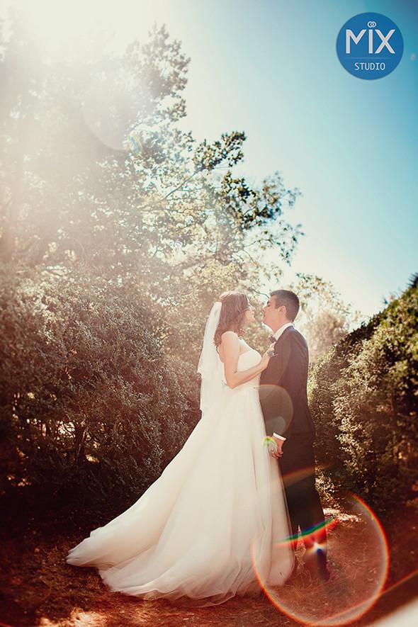 Свадьба 2015  - фото №10