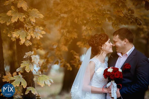 Свадебная осень 2015 - фото №1