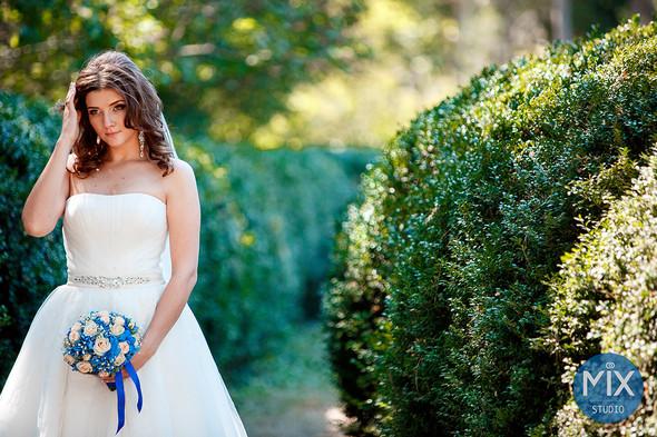 Свадьба 2015  - фото №9