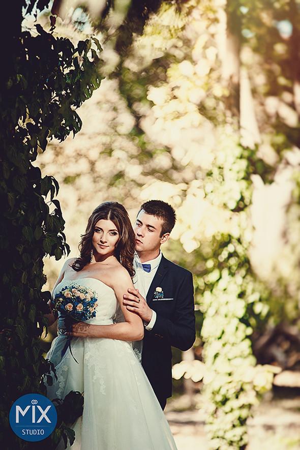 Свадьба 2015  - фото №12