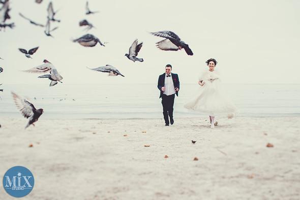Свадьба 2016  - фото №8