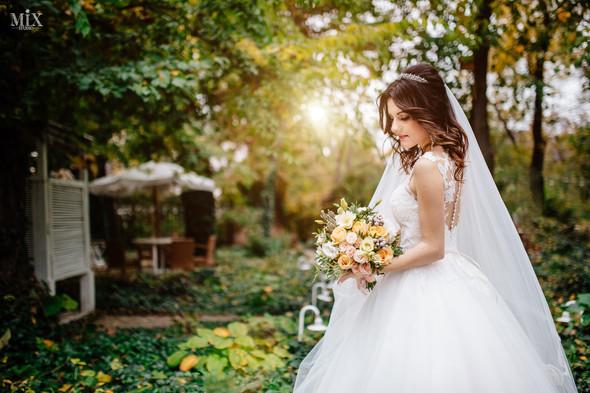 Свадебное фото 2017 - фото №3