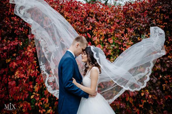 Свадебное фото 2017 - фото №6