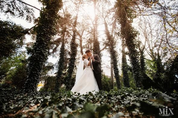 wedding 2018 - фото №12