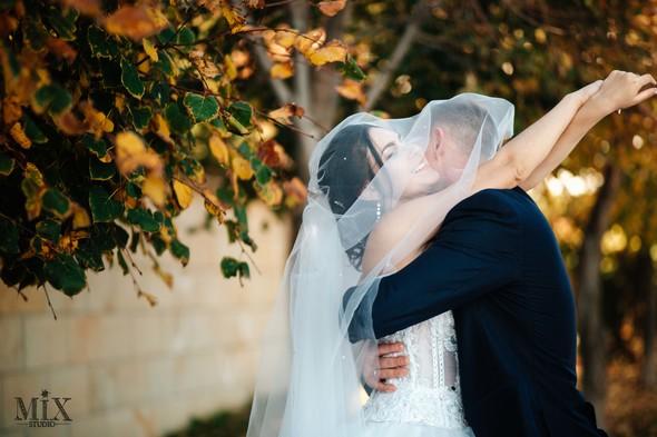 Свадьба 2017 - фото №12