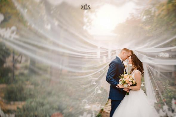 Свадебное фото 2017 - фото №4