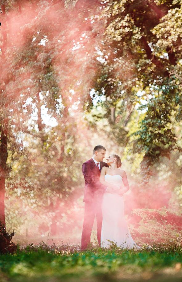 Свадьба 2015 - фото №13