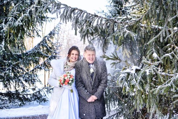 Снежная свадьба - фото №1