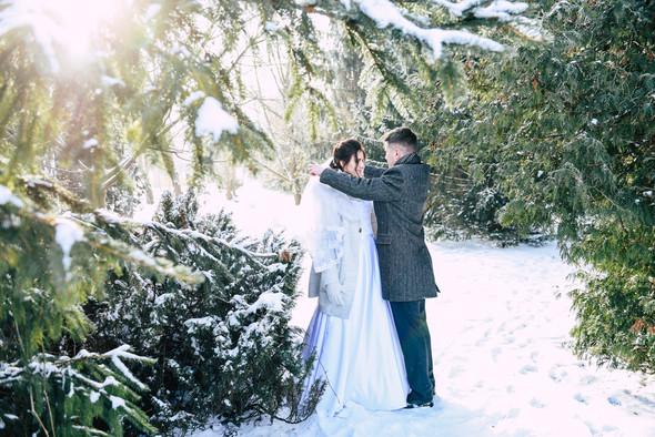 Снежная свадьба - фото №24