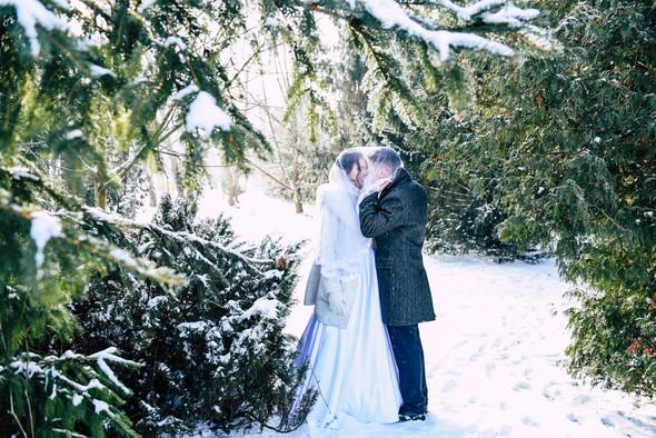 Снежная свадьба - фото №23