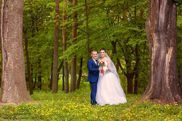 Свадьба Аллы и Вани  - фото №11