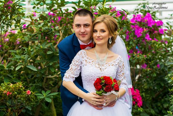 Свадьба Дениса и Иры  - фото №27