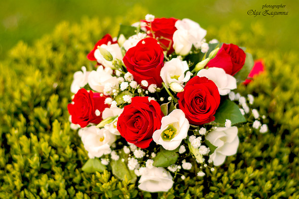 Свадьба Аллы и Вани  - фото №53
