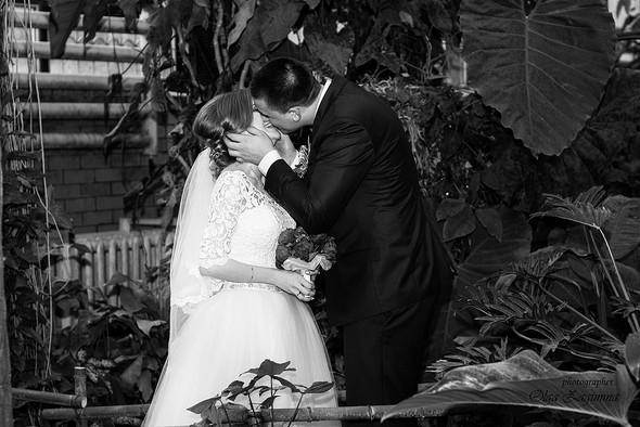 Свадьба Дениса и Иры  - фото №51