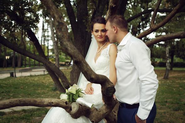 Наташа и Олег - фото №2