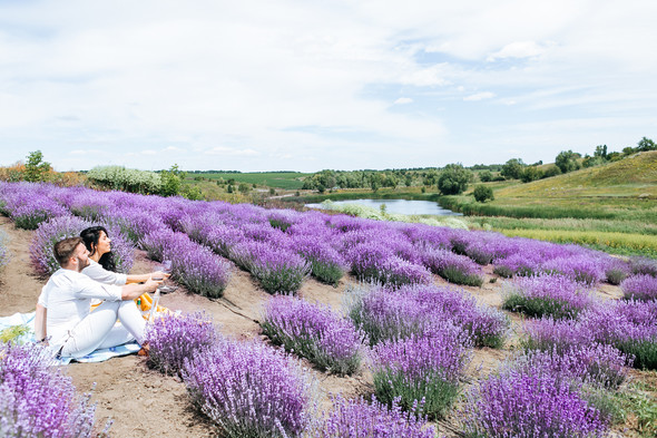 Day in Lavender - фото №23