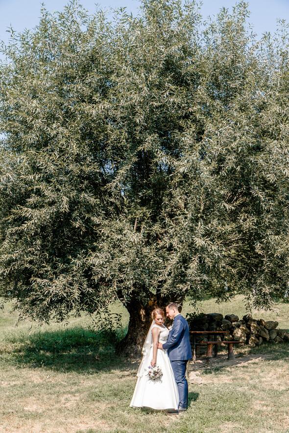 Свадьба Мирославы и Андрея - фото №12