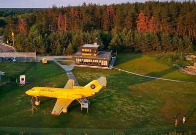 Yellow Plane - фото 3