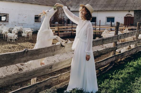 AMISH WEDDING - фото №23