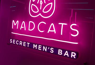 MAD CATS - фото 1
