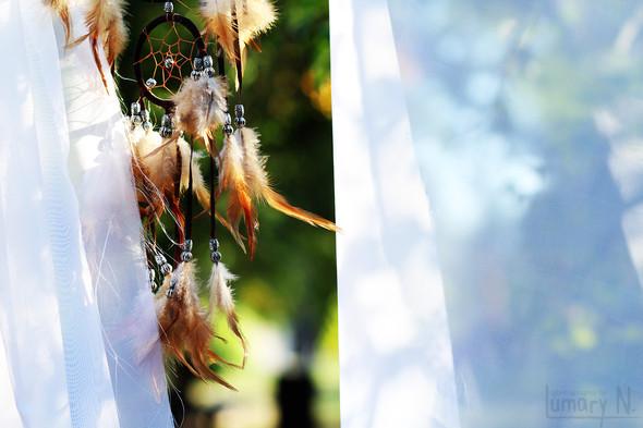 Свадьба четы Молнар - фото №9