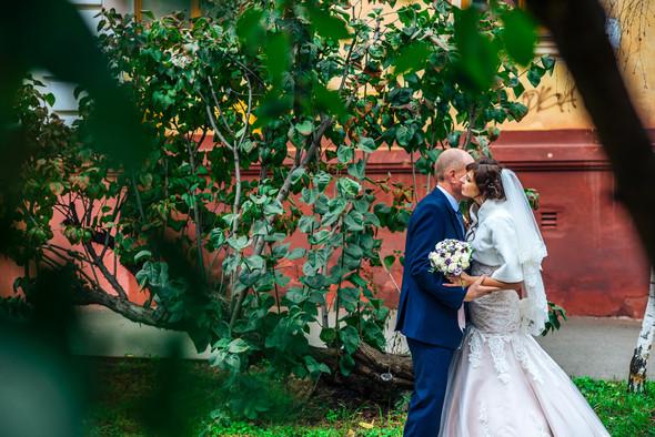 Свадьба Олега и Оли - фото №20