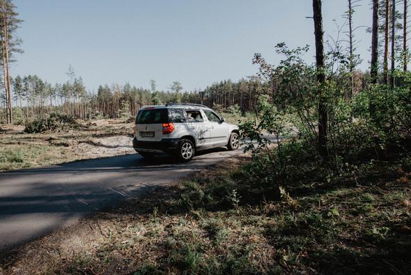 Настя и Коля - фото №16