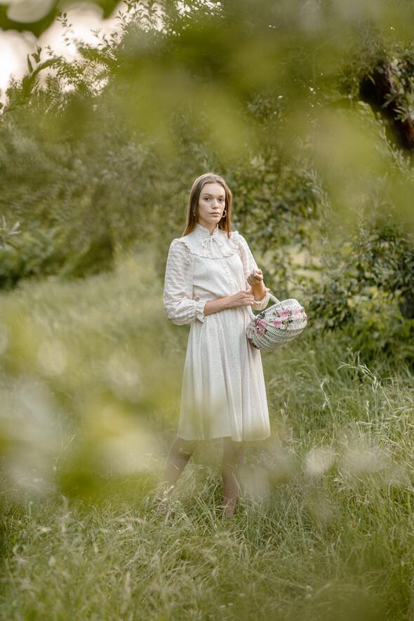 Яблуневий садок - фото №13