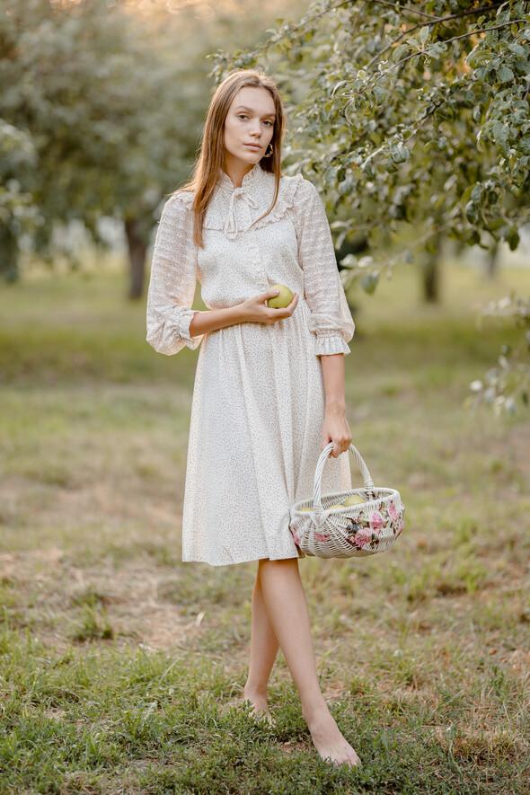 Яблуневий садок - фото №10