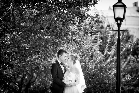 Алина и Андрей - фото №15