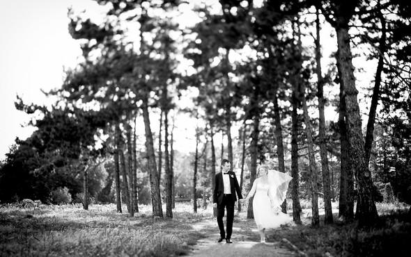 Алина и Андрей - фото №10
