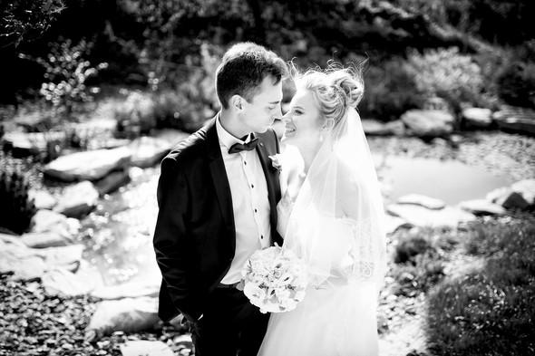 Алина и Андрей - фото №11