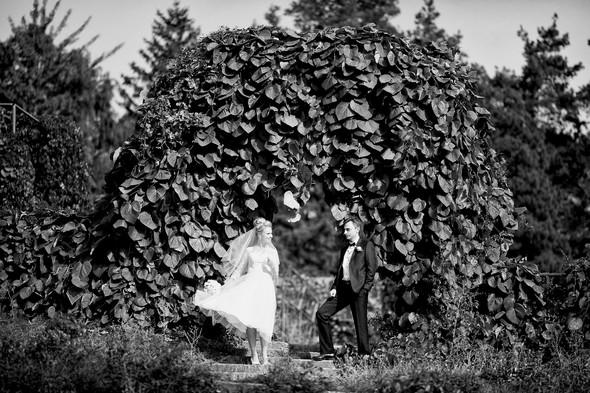 Алина и Андрей - фото №9