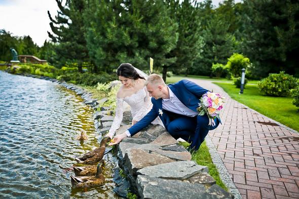 Сергей и Диана - фото №9